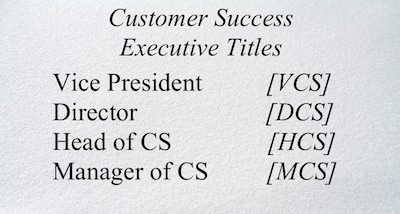 Text: Vice President, Director, Head of CS, Manager of CS