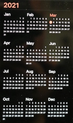 Graphic showing months of the year for 2021
